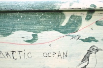 Antartic Ocean with a funny penguin...